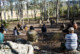 Photograph of types of burn demonstration at Firesticks Workshop at Bundanon Trust in Illaroo on the South Coast of NSW